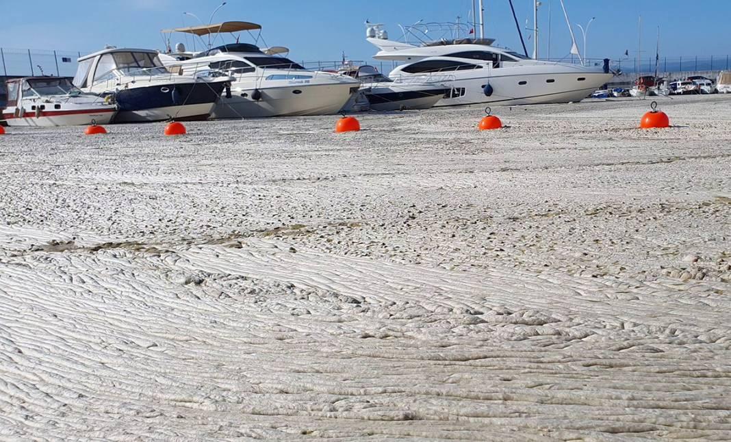 Teknesine giden diş hekimine şok: İlk başta beton sandı ama yaklaşınca hareket ettiğini... 3