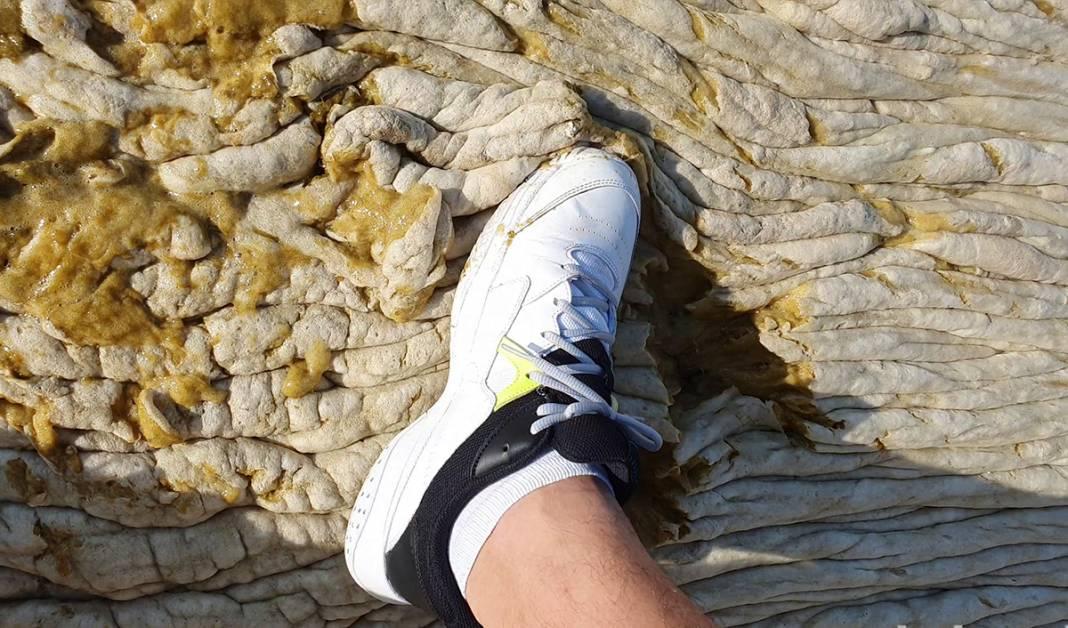 Teknesine giden diş hekimine şok: İlk başta beton sandı ama yaklaşınca hareket ettiğini... 5